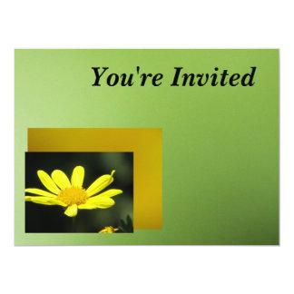 Flor amarilla de la margarita invitación 16,5 x 22,2 cm
