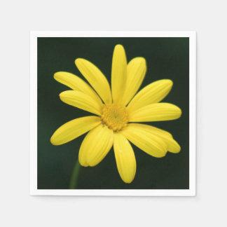 Flor amarilla de la margarita servilleta desechable