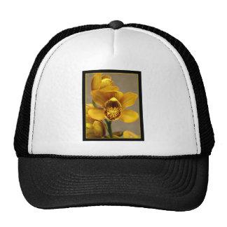 Flor amarilla de la orquídea gorros bordados