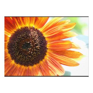 Flor amarilla de la primavera comunicados personalizados