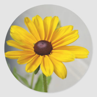Flor amarilla de oro pegatinas redondas