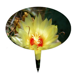 Flor amarilla del cactus del anzuelo figuras de tarta