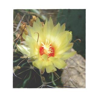 Flor amarilla del cactus del anzuelo blocs