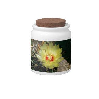 Flor amarilla del cactus del anzuelo jarras para caramelos