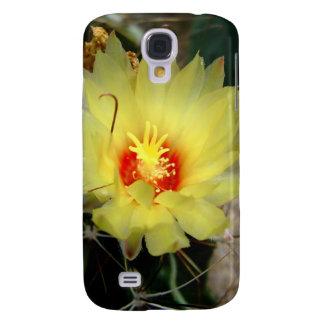 Flor amarilla del cactus del anzuelo