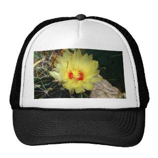 Flor amarilla del cactus del anzuelo gorros bordados
