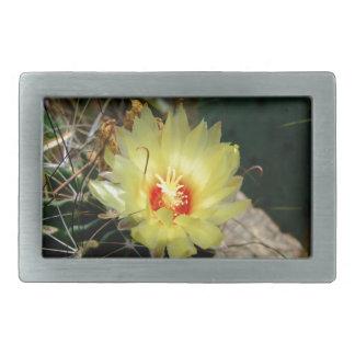 Flor amarilla del cactus del anzuelo hebilla de cinturon rectangular