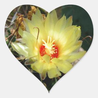 Flor amarilla del cactus del anzuelo calcomanía corazón personalizadas