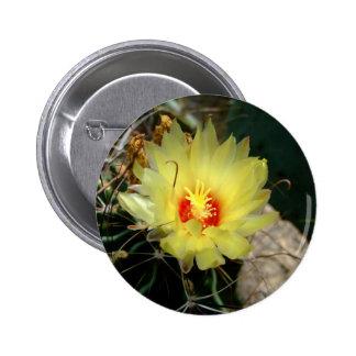 Flor amarilla del cactus del anzuelo pin