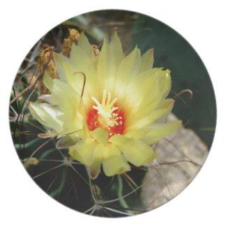 Flor amarilla del cactus del anzuelo plato de cena