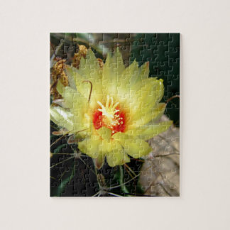Flor amarilla del cactus del anzuelo puzzles con fotos