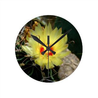 Flor amarilla del cactus del anzuelo relojes