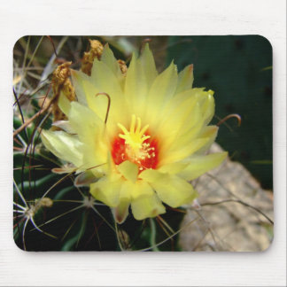 Flor amarilla del cactus del anzuelo alfombrillas de raton