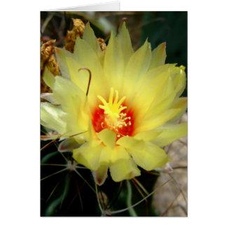 Flor amarilla del cactus del anzuelo felicitacion
