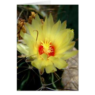 Flor amarilla del cactus del anzuelo tarjeton
