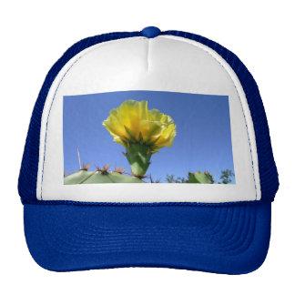 Flor amarilla del cactus del higo chumbo gorros