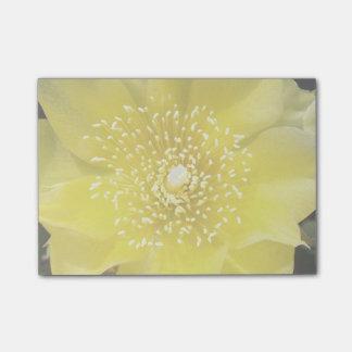 Flor amarilla del cactus del higo chumbo post-it® nota