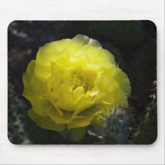 Flor amarilla del cactus en el cojín de ratón oscu alfombrillas de ratón