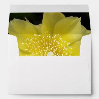 Flor amarilla del cactus sobre