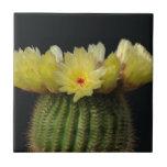 Flor amarilla del cactus teja cerámica