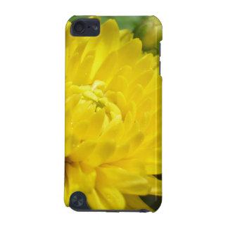 Flor amarilla del crisantemo carcasa para iPod touch 5G