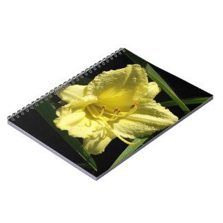 Flor amarilla del Daylily Libreta