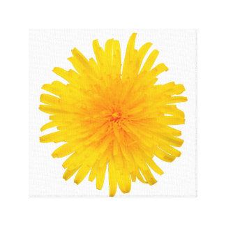 Flor amarilla del diente de león lona envuelta para galerias