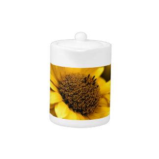 Flor amarilla del Echinacea del gorra de Sun