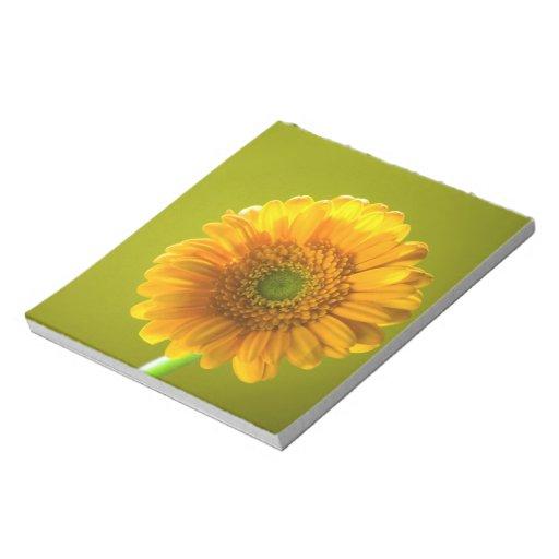 Flor amarilla del Gerbera de la margarita Bloc
