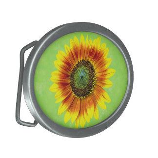 Flor amarilla del girasol y verde floral intrépida hebillas de cinturón ovales