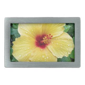 Flor amarilla del hibisco de Hawaii Hebillas De Cinturon Rectangulares