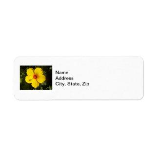 Flor amarilla del hibisco etiqueta de remitente