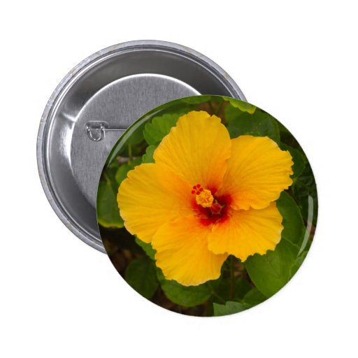 Flor amarilla del hibisco pin redondo de 2 pulgadas