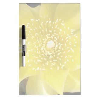 Flor amarilla del higo chumbo del cactus pizarra blanca