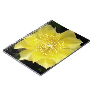 Flor amarilla del higo chumbo del cactus spiral notebooks