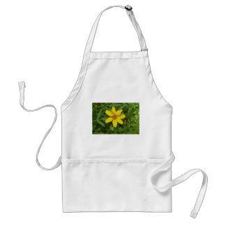 Flor amarilla en la hierba delantal