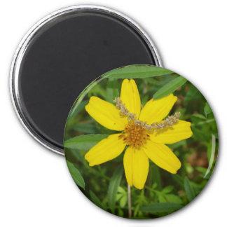 Flor amarilla en la hierba imán redondo 5 cm