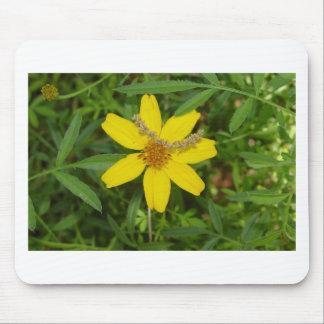 Flor amarilla en la hierba mousepad