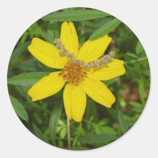 Flor amarilla en la hierba pegatina redonda