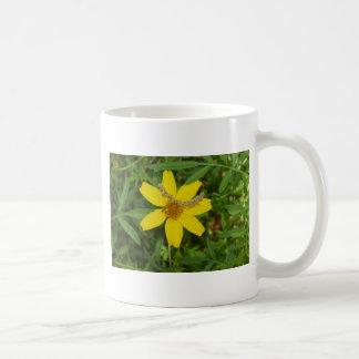 Flor amarilla en la hierba taza básica blanca