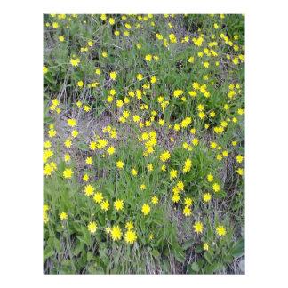 Flor amarilla tarjeton