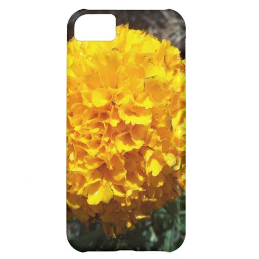 Flor amarilla funda para iPhone 5C