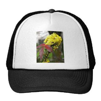 Flor amarilla gorro de camionero