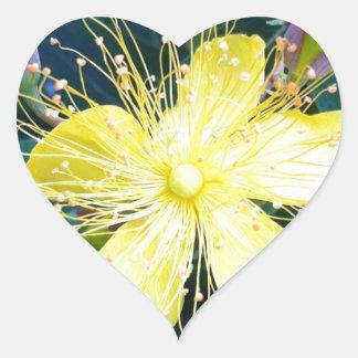 Flor amarilla pegatina corazón personalizadas