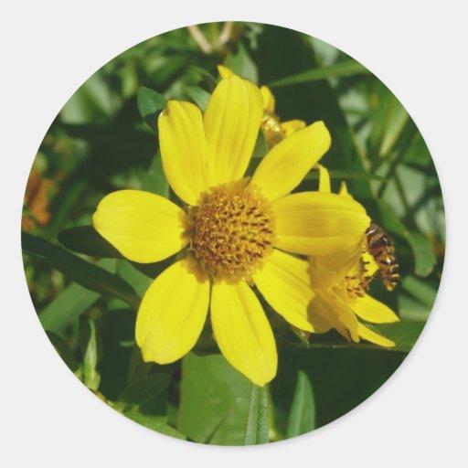 Flor amarilla pegatina