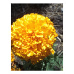 Flor amarilla plantilla de membrete