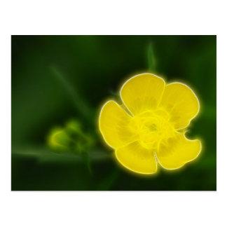 Flor amarilla postales