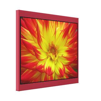Flor amarilla roja lienzo envuelto para galerías