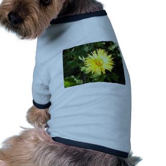 Flor amarilla ropa de perro