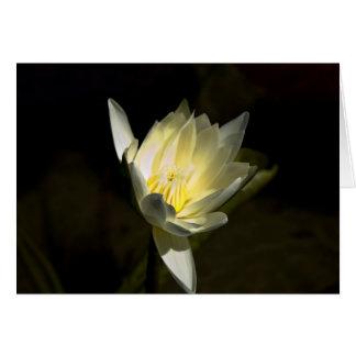 Flor amarilla tarjeta pequeña